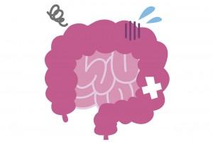 腸イメーシ